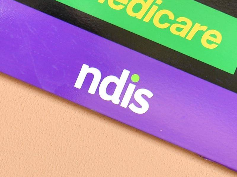 Stuart Robert says the government will be announcing its full NDIS plan in the next few weeks.